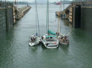 "Transiting the Panama Canal, ""El Cordero"" on the far right"