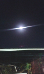 The moon-picture taken from the carpark